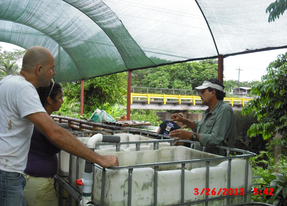 Costa Rica-Crazy Iguana Restaurant
