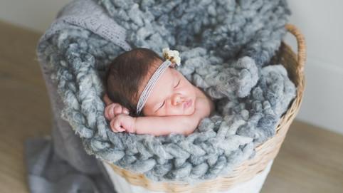 bebe en la cesta