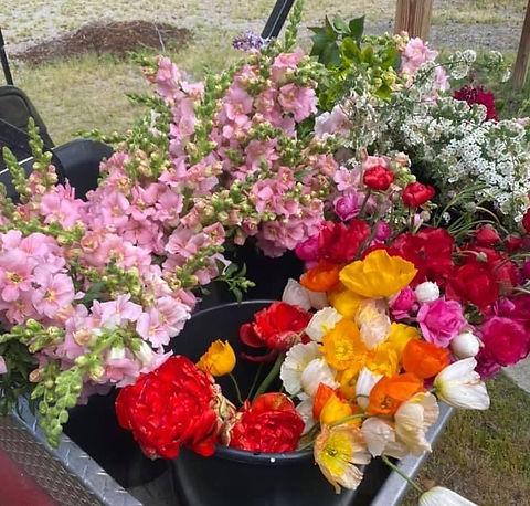 Flowers in golfcart 3 - Copy.jpeg