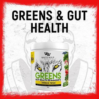 All-Supplements----gut-health.jpg