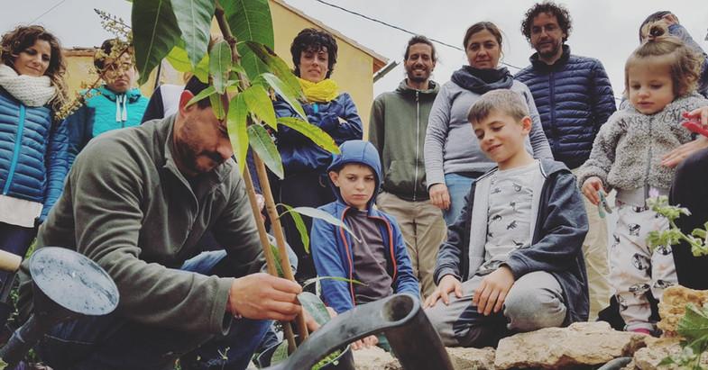 plantamos un árbol para cerrar cada taller