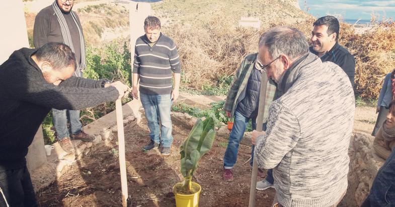 plantamos un árbol para cerrar cada evento