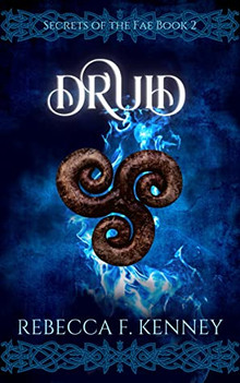 Druid by Rebecca F. Kenney review