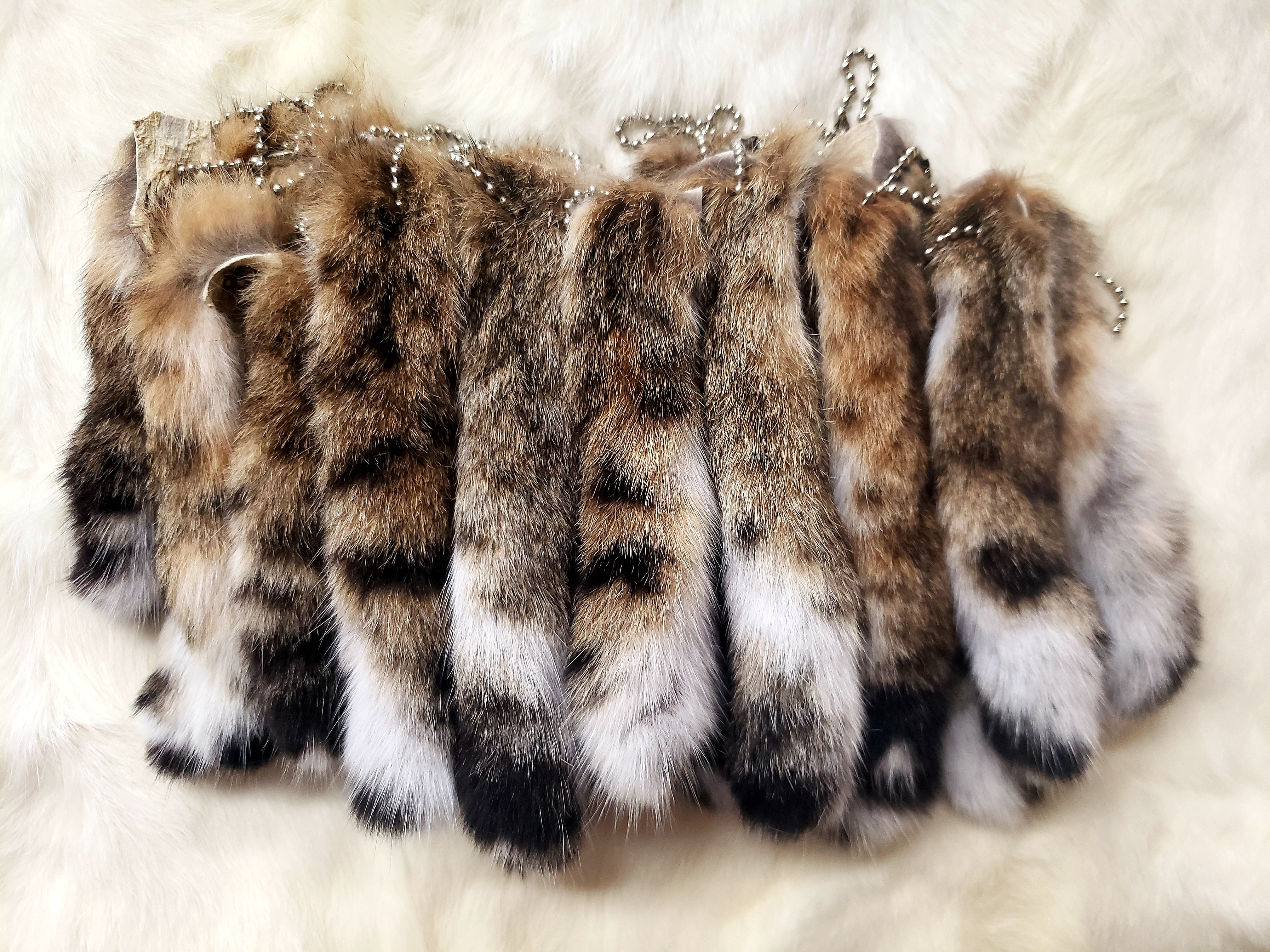 LYNX TAILS