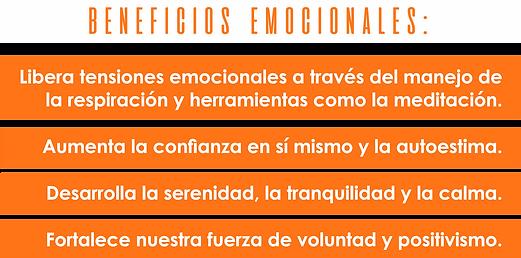 EMOCIONALES.png