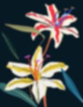lily-flower_edited.jpg