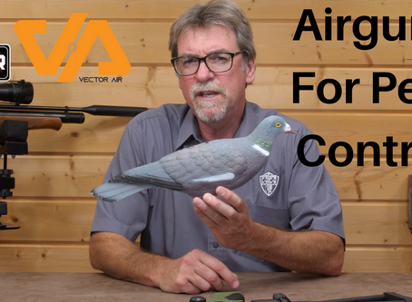 Airguns for pest control....