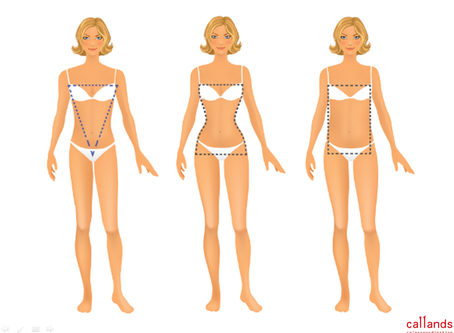 骨格診断、体型・顔型分析 -2/5