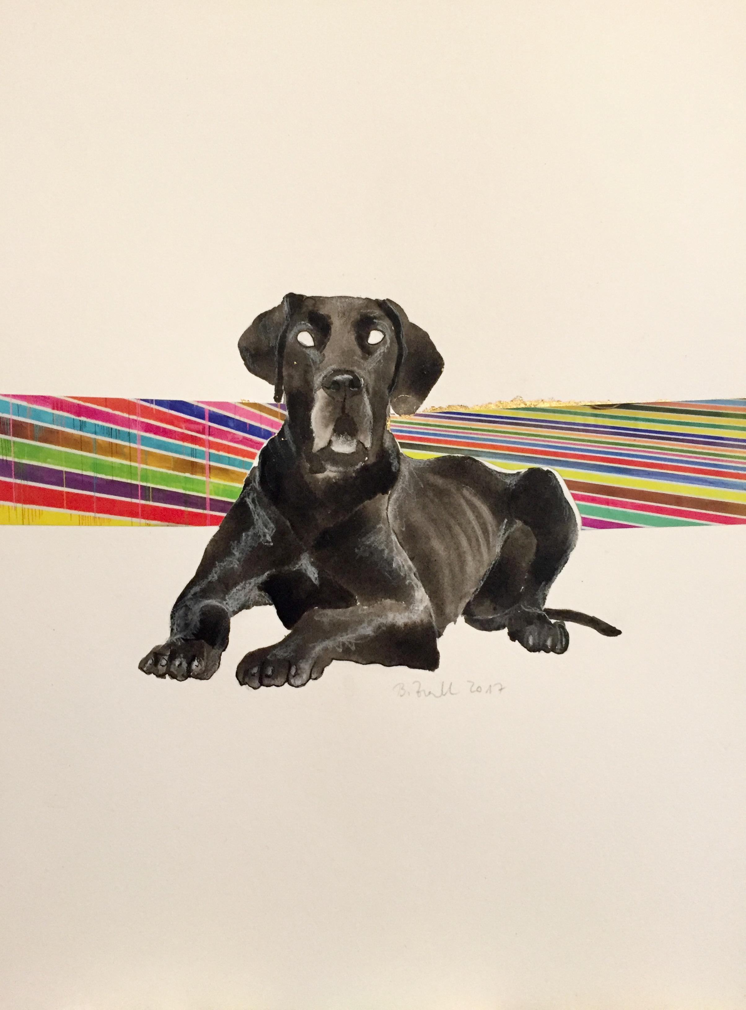 black dog I