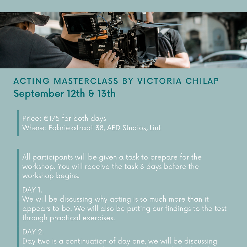 What is a professional actor?