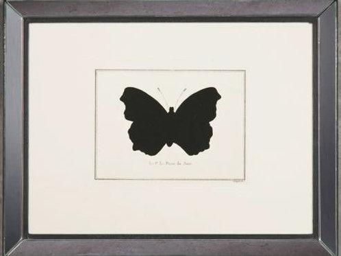 Quadro Papillon