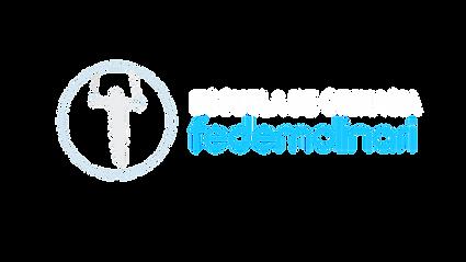 Logo FM Gymnastics PNG.png