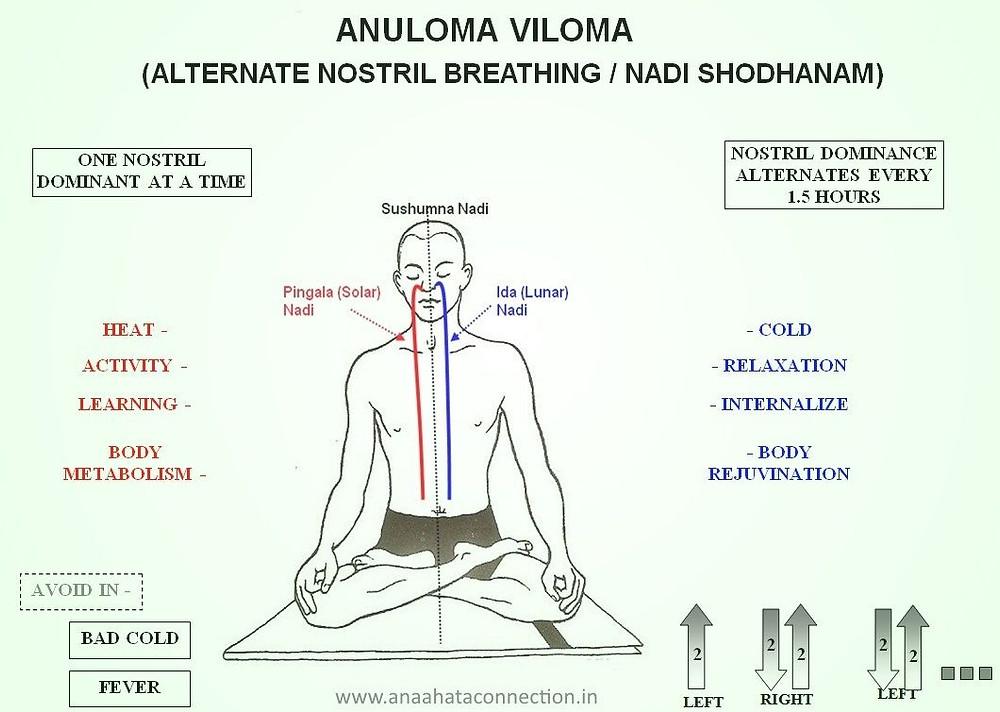 Anuloma viloma breathing exercise