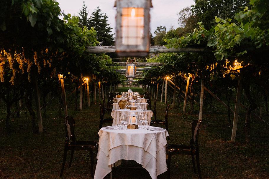 Vineyard-Dinner-SplitShire-18-01980.jpg