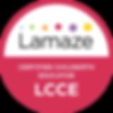 LI_228202-18_LCCE_pink.png