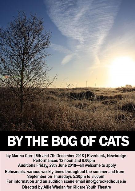 Bog of Cats.jpeg