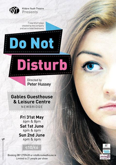 Do not disturb Poster.jpeg