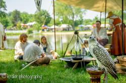 Renaissance Faire16-May 28, 2016