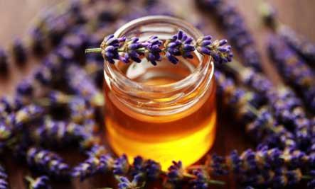 lavender-honey