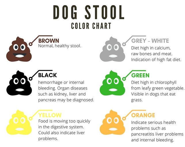 Dog-Stool-Color-Chart.jpg