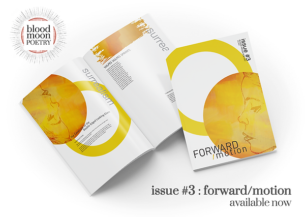 Mockup_issue3-2.png