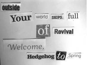 Spring | Jodie Duffy @chrysanthemum_poetry