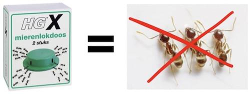 suusmaaktschoon.nl | suus maakt schoon | mieren bestrijden | mierenplaag | beste mierenlokdoos tegen mieren