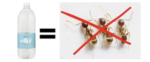 suusmaaktschoon.nl | suus maakt schoon | mieren bestrijden | mierenplaag | azijn tegen mieren