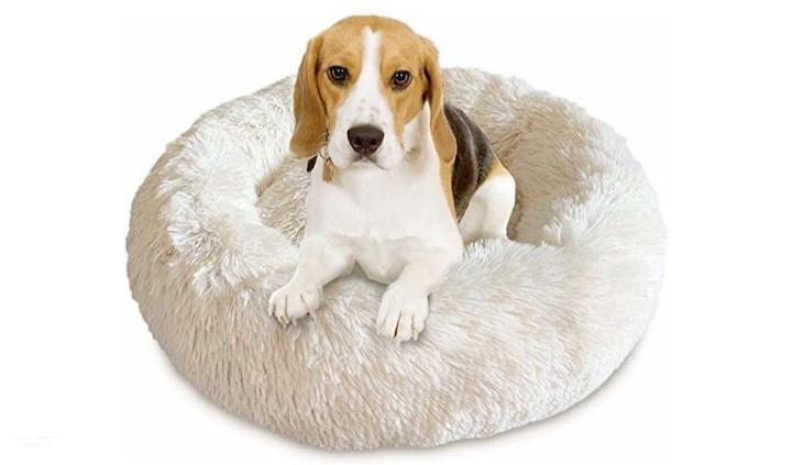 suusmaaktschoon.nl   huis opruimen hulp   honden slaapbed pluchen