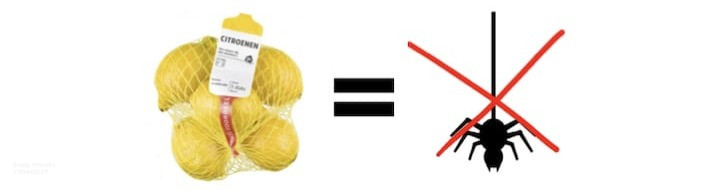 suusmaaktschoon.nl | suus maakt schoon | hoe spinnen verjagen | hoe kan ik spinnen verjagen | spinnen verjagen in huis | zelf spinnen bestrijden | spinnen tegenhouden |  veel spinnen in huis