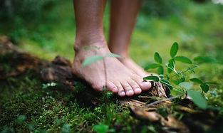 Leave a green footprint new.jpeg