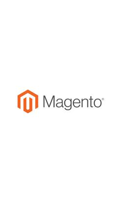 Magento Logo Home Page