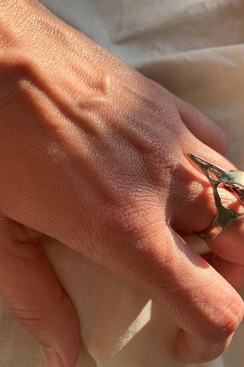 [COPY] Bird Skull Silver Ring