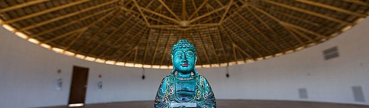 buddha in shala.jpg