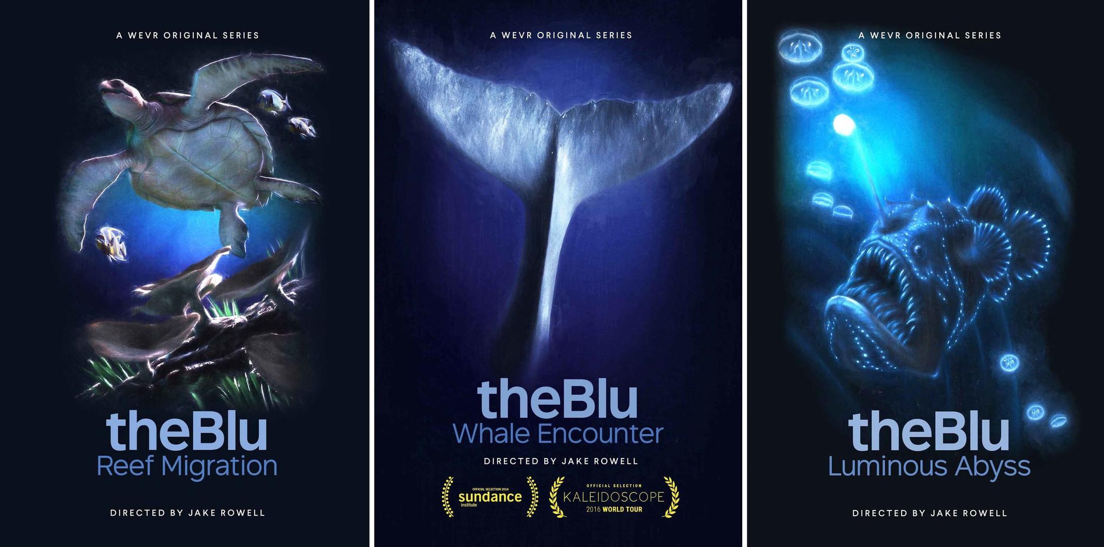 the blu vr.jpeg