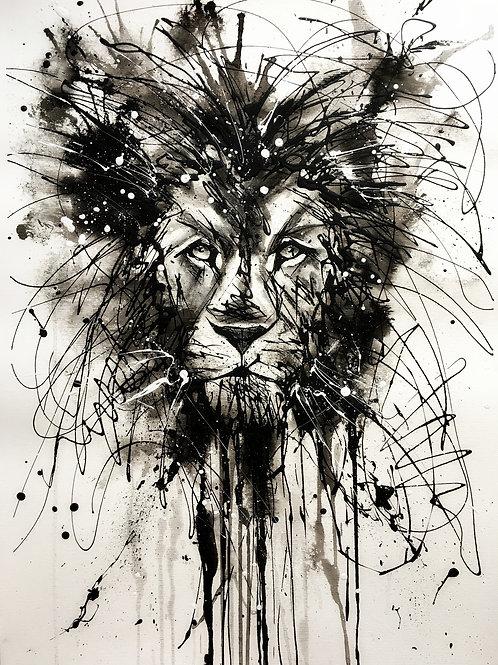 Drip Lion
