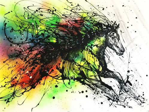 Colourful Horse