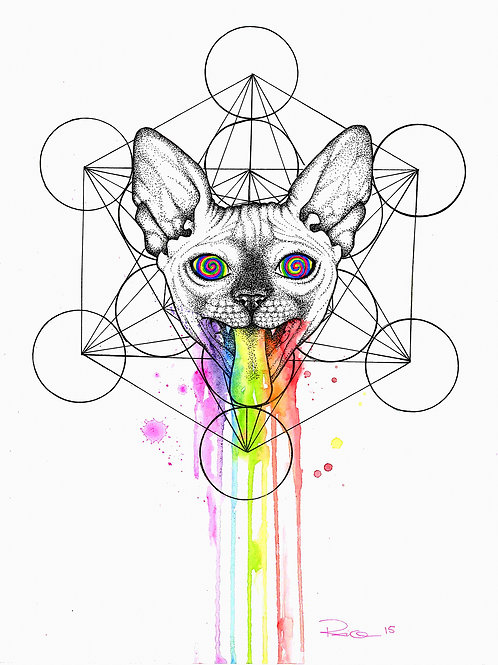 Psyca logo