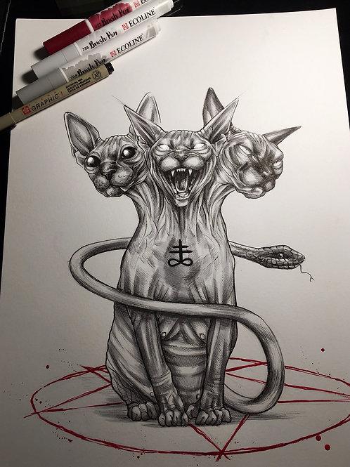 Cattus Habiti