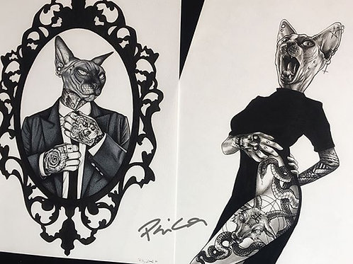 The hipster sphynx (Male and female version)
