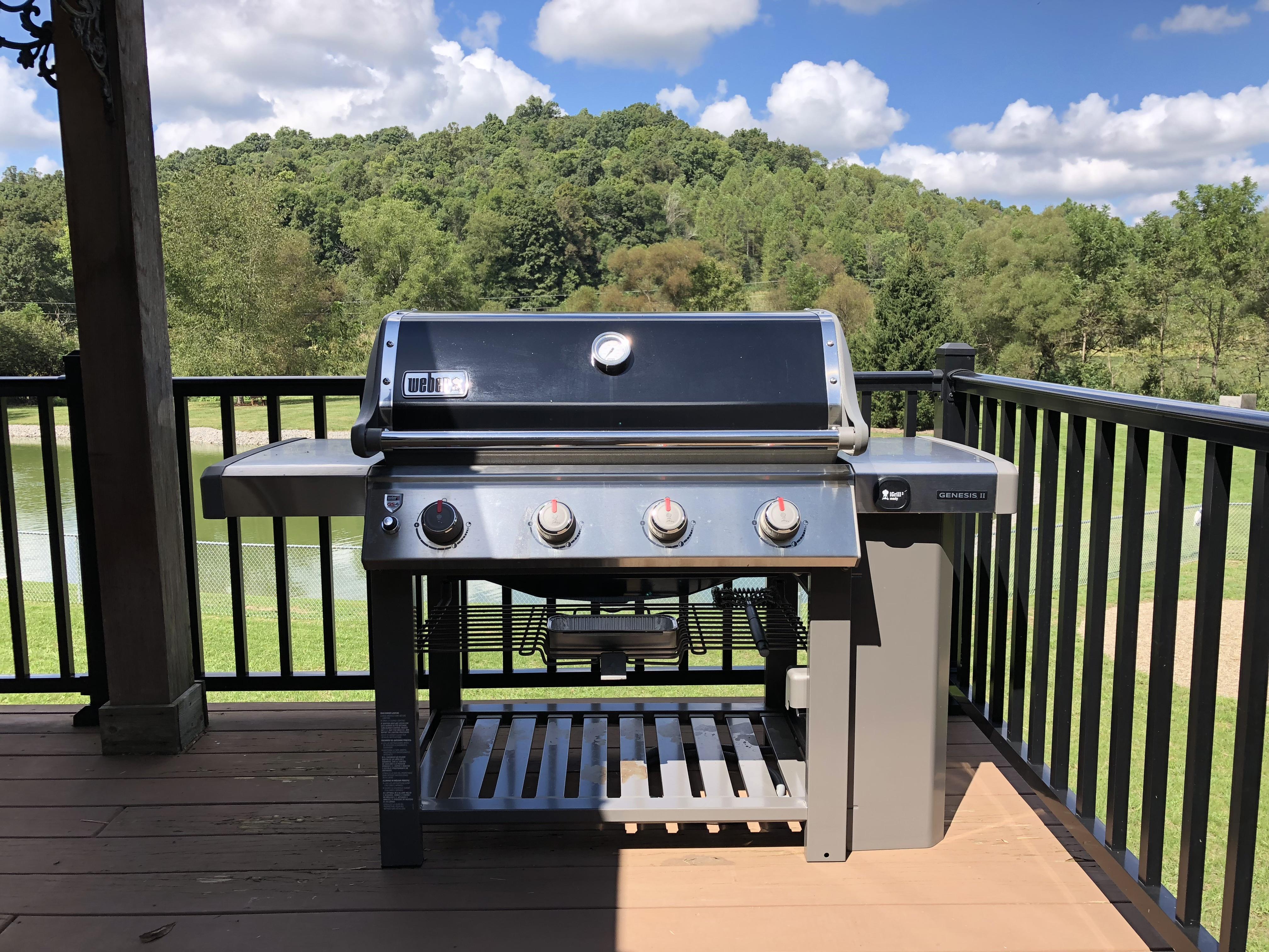 4-burner Weber gas grill