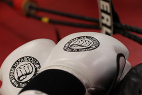 Team Hazardous Boxing Gloves