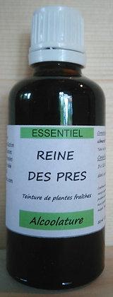 Alcoolature de Reine des prés (Filipendula ulmaria) biologique Teinture mère Extrait hydroalcoolique Elimination Minceur