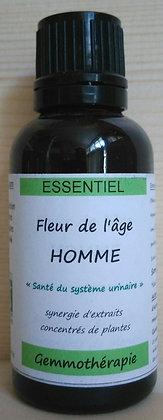 gemmothérapie bio synergie prostate homme biologique bourgeons cassis epilobe séquoia genévrier pin bio confort urinaire