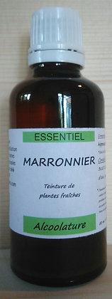 Alcoolature Marronnier (Aesculus hippocastanum) biologique Teinture mère Extrait plante fraîche circulation sang hémoroïdes