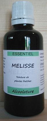Alcoolature de Mélisse (Melissa officinalis) Teinture mère Extrait plante fraîche calmant anxiété stress insomnie