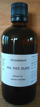 Alcoolature Ail des ours (Allium ursinum) teinture mère Extrait hydroalcoolique depuratif detox chélation métaux lourds hyper