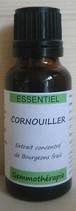 Extrait macérât mère concentré de bourgeons Cornouiller sanguin (Cornus sanguinea) Gemmothérapie biologique gemmo bio