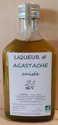 liqueur artisanale biologique Agastache anisée Agastache foeniculum liqueur disgestive disgestif bio