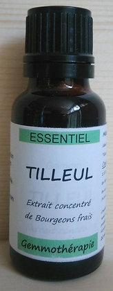 Extrait macérât mère concentré de bourgeons Tilleul (Tilia) gemmothérapie biologique Tilleul gemmo bio tilleul